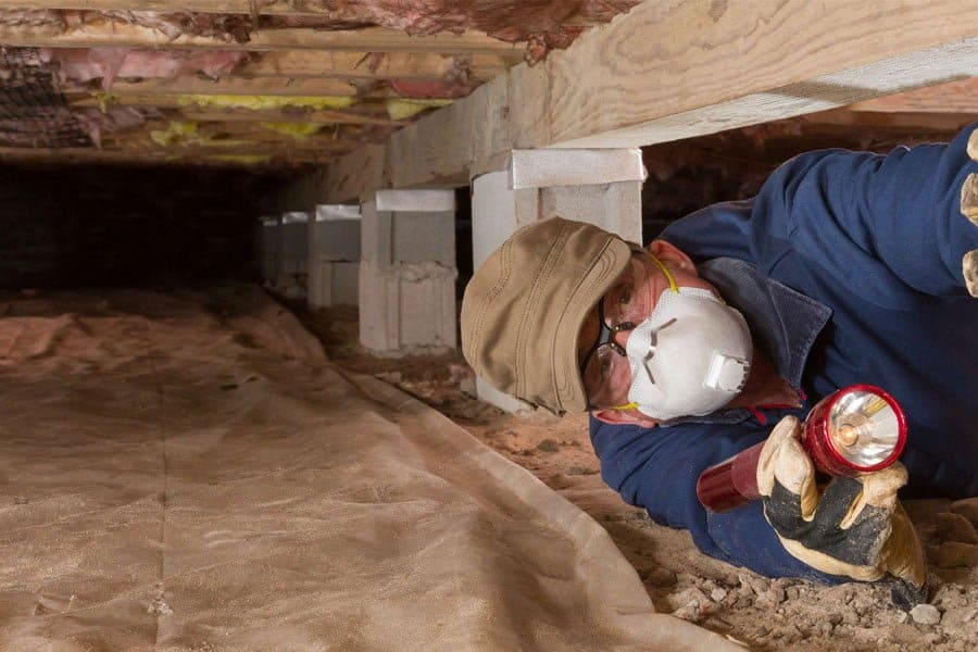 Pest Inspector conducting termite inspections